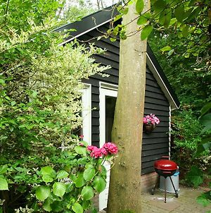 Charming Holiday Home In Veere Near Forest photos Exterior