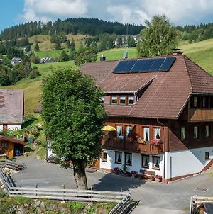 Appealing Apartment In Todtnau Baden-Wurttemberg With Free Wifi photos Exterior