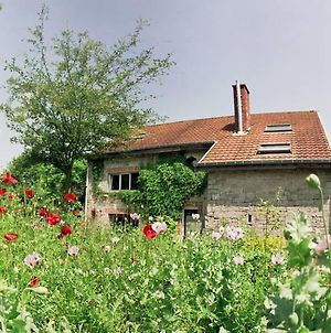 Spacious Holiday Home With Garden Near Forest In Durbuy photos Exterior