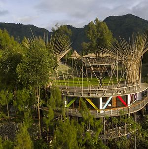 Pagupon Bromo Budget Lodge photos Exterior