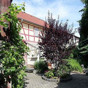Luxurious Holiday Home In Steinthaleben Thuringia With Private Terrace photos Exterior