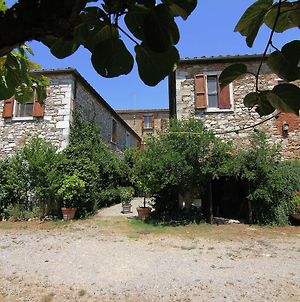 Exotic Farmhouse In Asciano With Swimming Pool photos Exterior