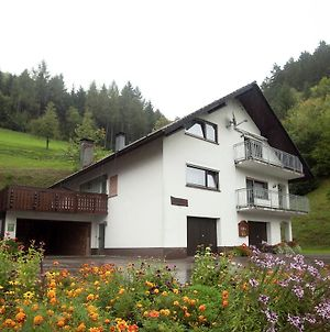 Modern Apartment In Bad Peterstal-Griesbach With Vineyards photos Exterior