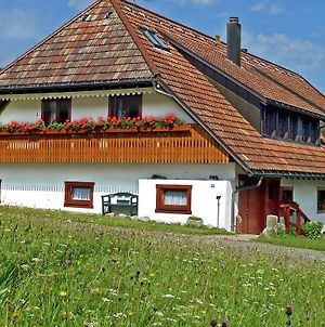 Luscious Apartment In Black Forest With Free Wi-Fi photos Exterior