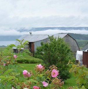The Rustic House Of The Fjord photos Exterior