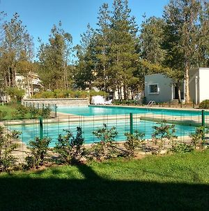 Bosque Del Algarrobo Apartment photos Exterior
