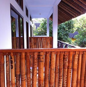 Lily Pad Guest House photos Exterior
