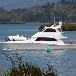 Tides Reach Whitianga photos Exterior