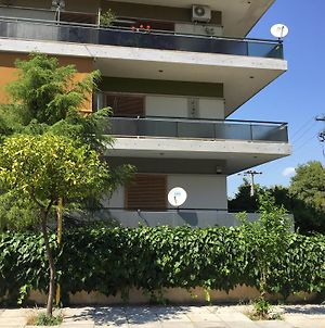 Apartment In Pleasant Athens Suburb photos Exterior