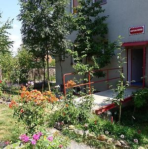 Bed & Breakfast Orli Hnizdo photos Exterior