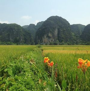 Tam Coc Mountain View Homestay photos Exterior