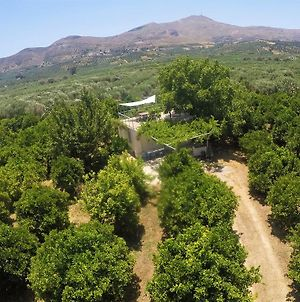 Farm House In Bio Οrange Plantation photos Exterior