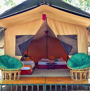 Wilderness Camping Yala photos Exterior