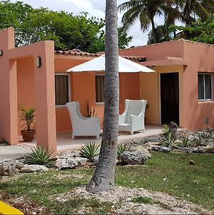 Sercotel Club Cayo Guillermo (Adults Only) photos Exterior