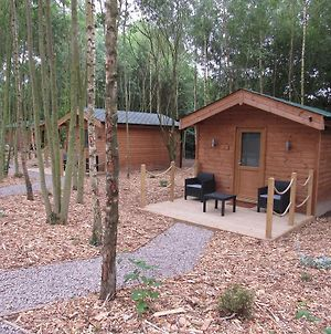 Riddings Wood Lodges photos Exterior