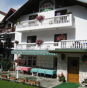 Pension Raluca photos Exterior