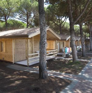 Il Gabbiano Camping Village photos Exterior