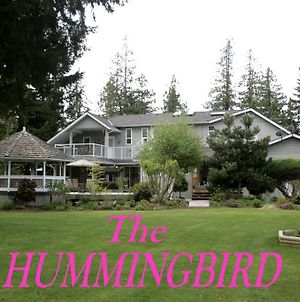 Hummingbird Guesthouse photos Exterior