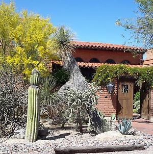 Desert Trails Bed & Breakfast photos Exterior
