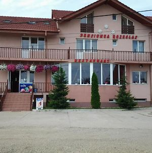 Pension Rozeclas photos Exterior