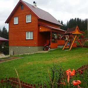Romashka Guest House photos Exterior