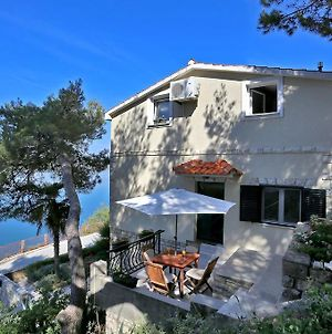 Apartments By The Sea Novigrad - 14028 photos Exterior
