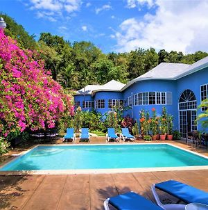The Blue House Boutique Bed & Breakfast photos Exterior
