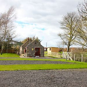 The Bunkhouse At Raglan Cottage And Caravan Park photos Exterior