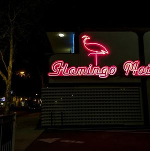 The Flamingo Motel photos Exterior
