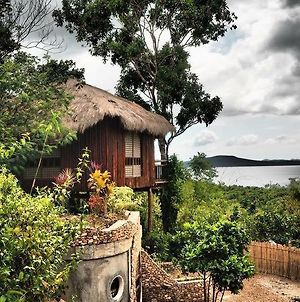 Sanctuaria Treehouses Busuanga photos Exterior