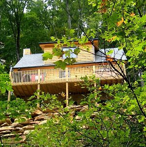 Black Beary Cabin photos Exterior