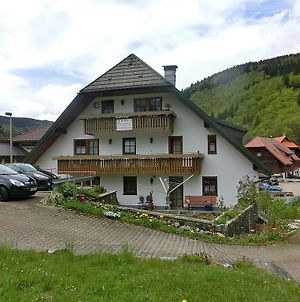 Lovely Apartment Near Ski Area Feldberg photos Exterior
