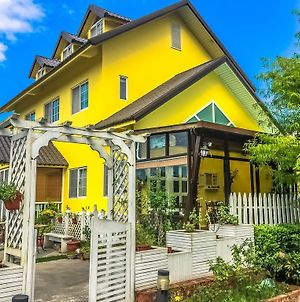 Dream House Bed And Breakfast photos Exterior