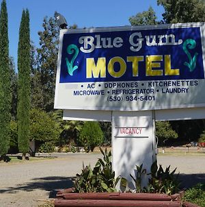 Blue Gum Motel photos Exterior
