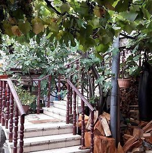 Nika'S Guest House photos Exterior