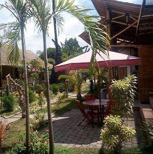 Java Sunrise Homestay photos Exterior