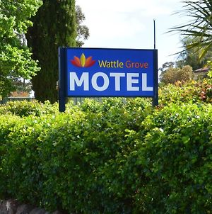 Wattle Grove Motel Maryborough photos Exterior