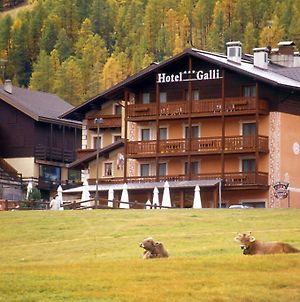 Hotel Galli photos Exterior