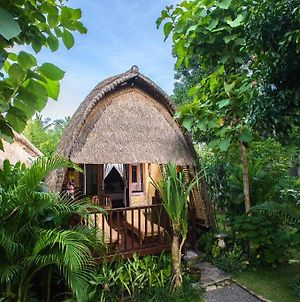 Alam Nusa Bungalow Huts & Spa photos Exterior