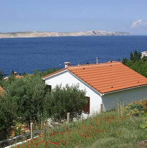 Seaside Holiday House Stara Novalja 4152 photos Exterior