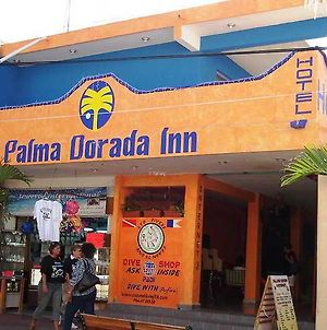 Palma Dorada Inn photos Exterior