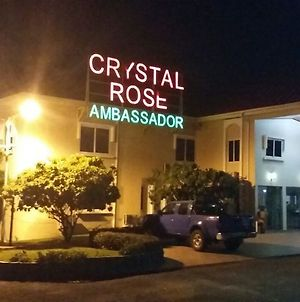 Crystal Rose Ambassador photos Exterior