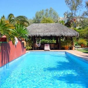 Casa Las Palmeras Suites Marbella - Adults Only photos Exterior