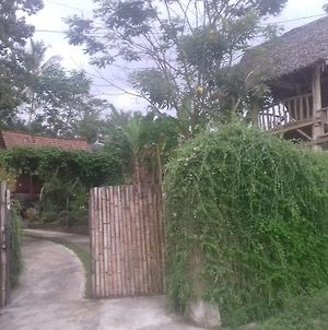 Stay In Ijen photos Exterior