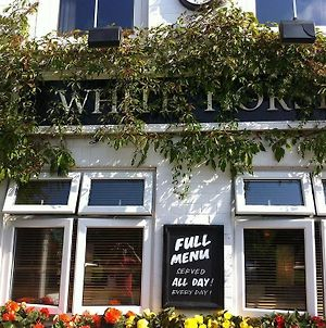 The White Horse Crostwick photos Exterior