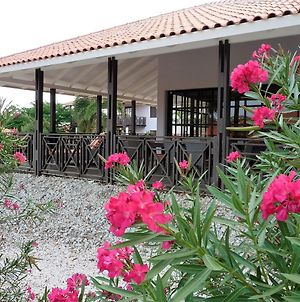 Blue Bay Beach Villa 14 photos Exterior