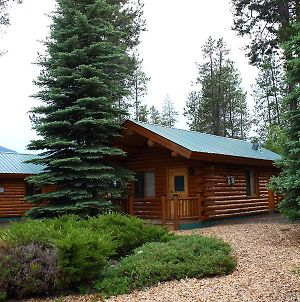 Silverwolf Log Chalet Resort photos Exterior