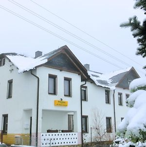 Lovely Apartment Near Ski Area In Tannenbergsthal photos Exterior