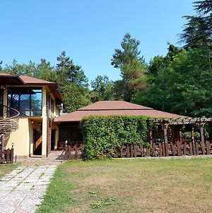 Guest House Black Sea photos Exterior
