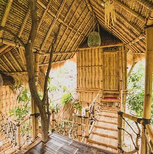 Eco Tree House Amed photos Exterior